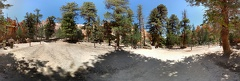 Down in Bryce Canyon pano photosphere